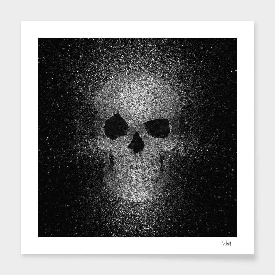 Skull glitter silver