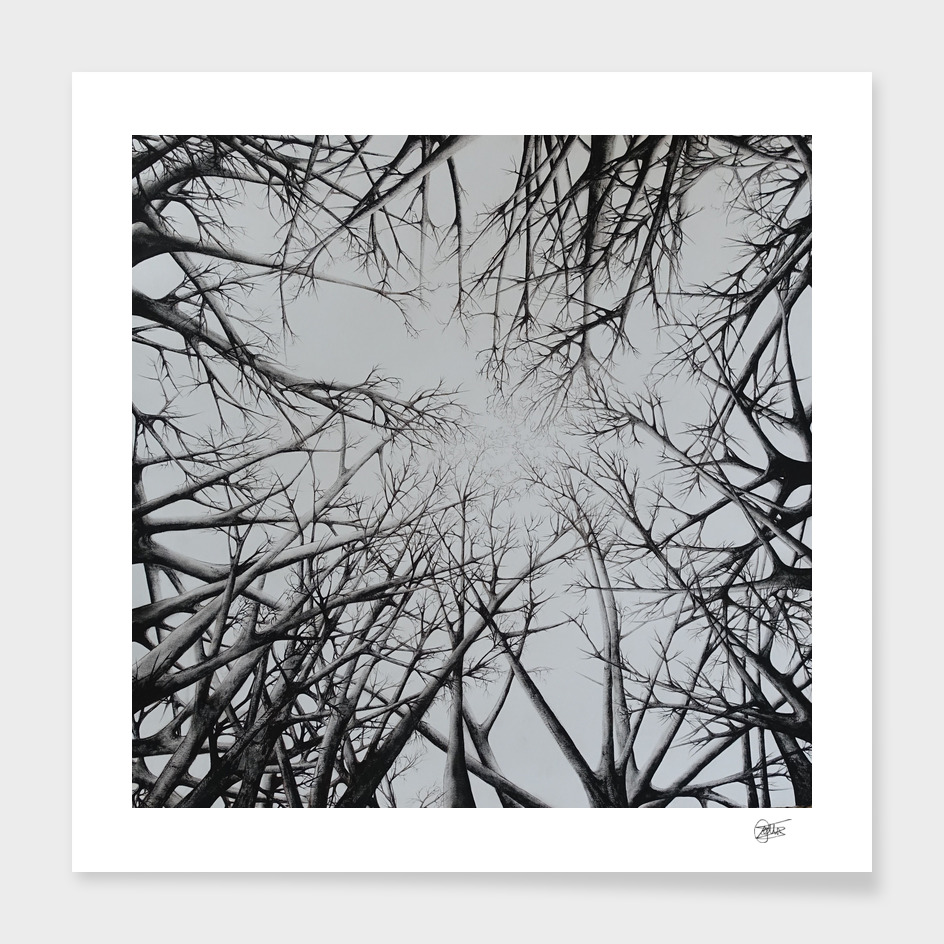 Tree - Declination IX