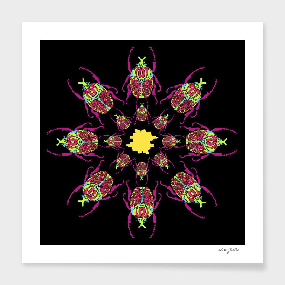 Beetle mandala