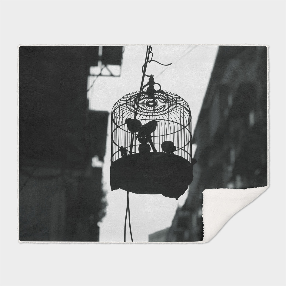 caged II