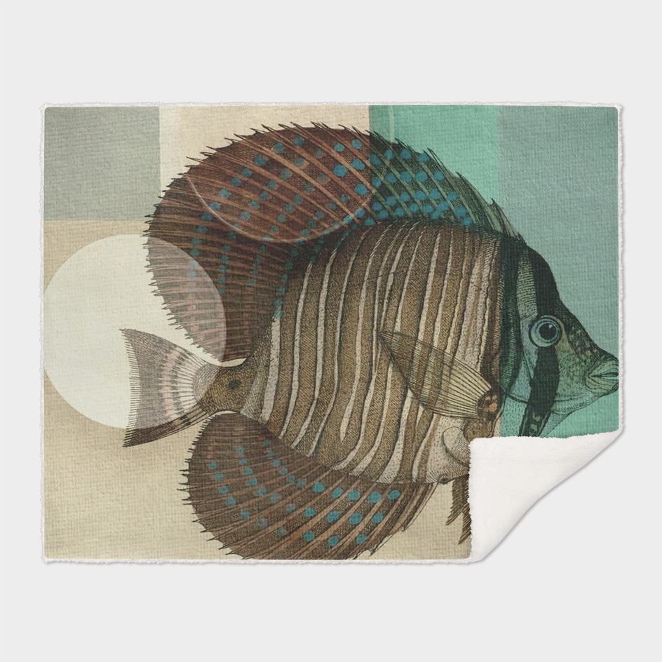 Fish Between Circles 4