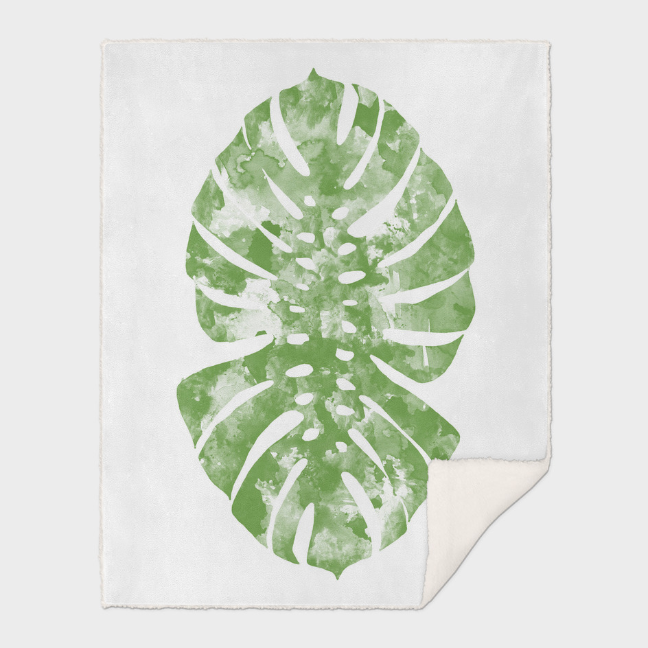monstera watercolor