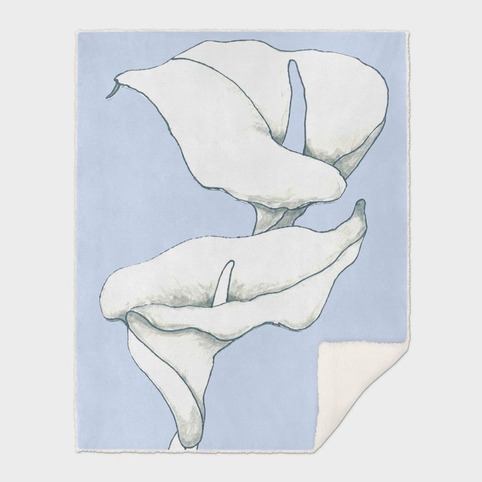 Two Calla Lillies ~ Fresh Blue