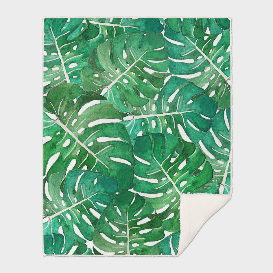 Monstera leaves watercolor n.1