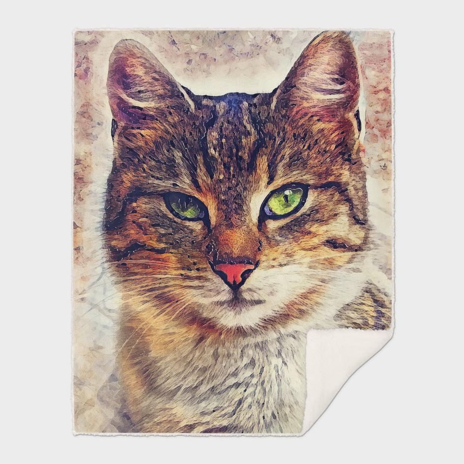 cat Saba