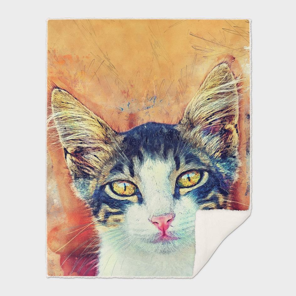 cat Jacky