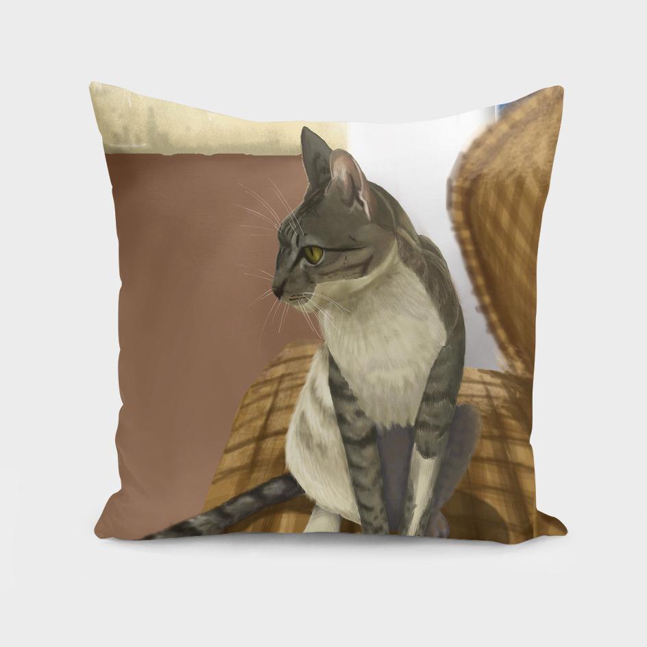 Cretan cat