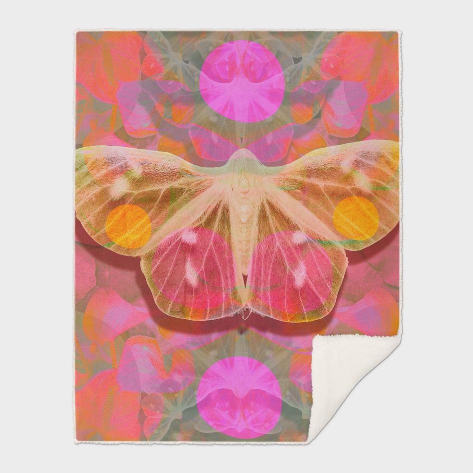 Pink Glow Butterfly