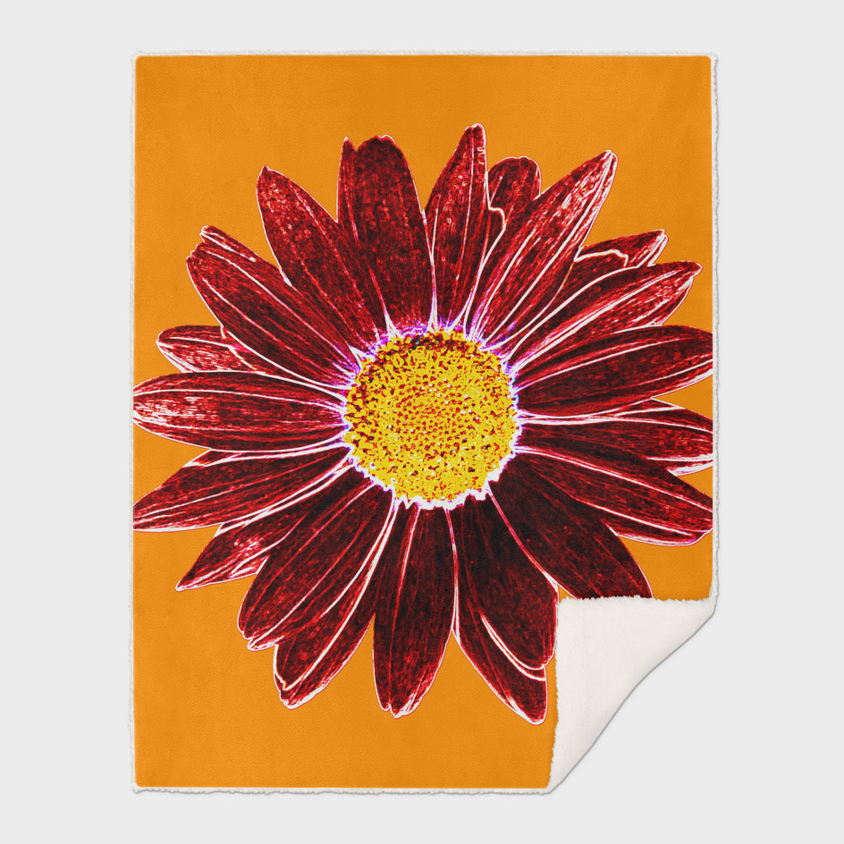 Daisy Love - Red-Yellow