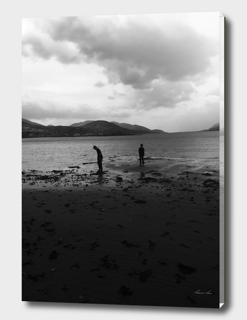 'Pondering' Caol, Highlands of Scotland