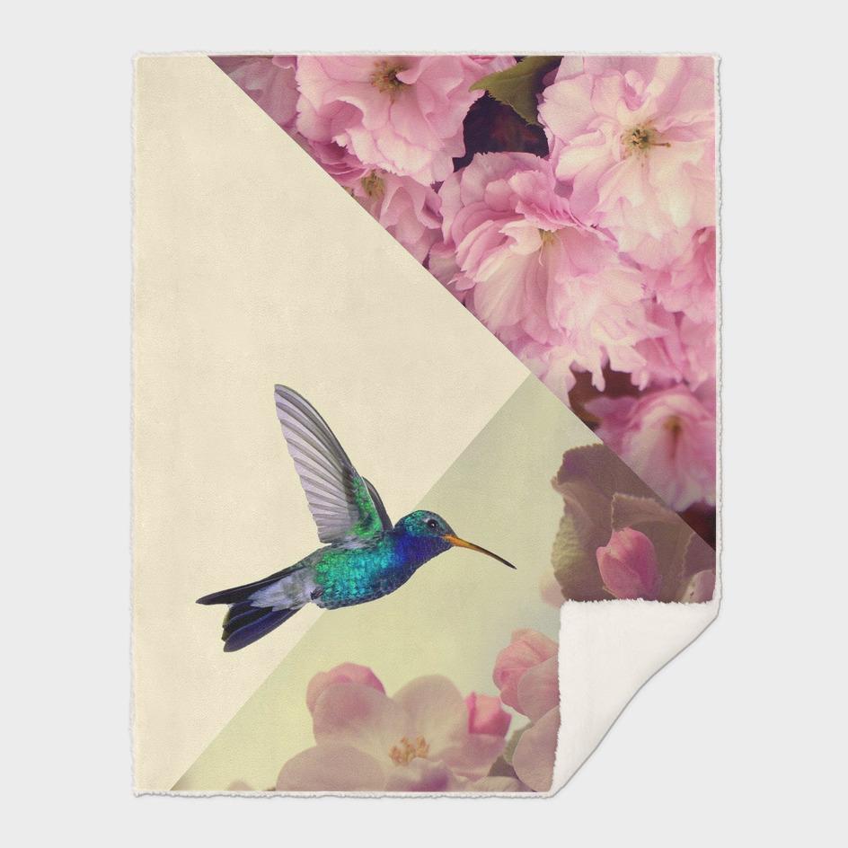 humming bird in love