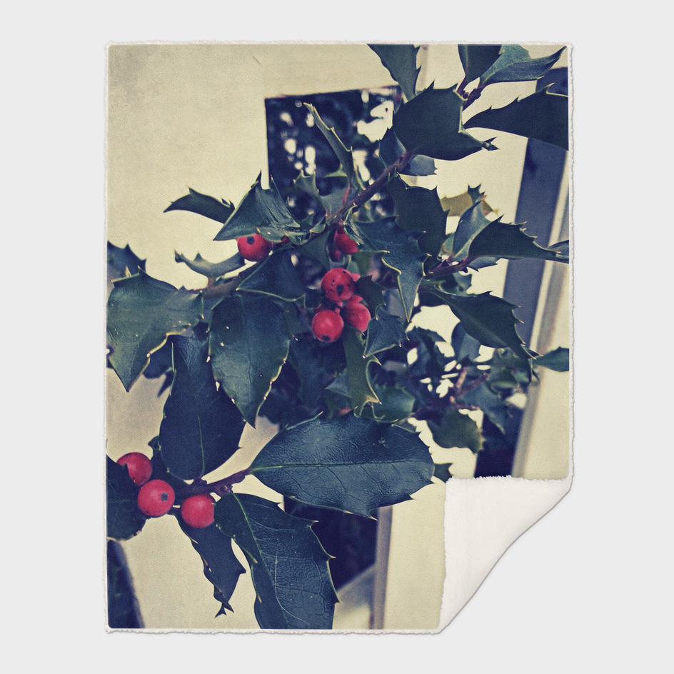 Vintage Holly on Picket Fence