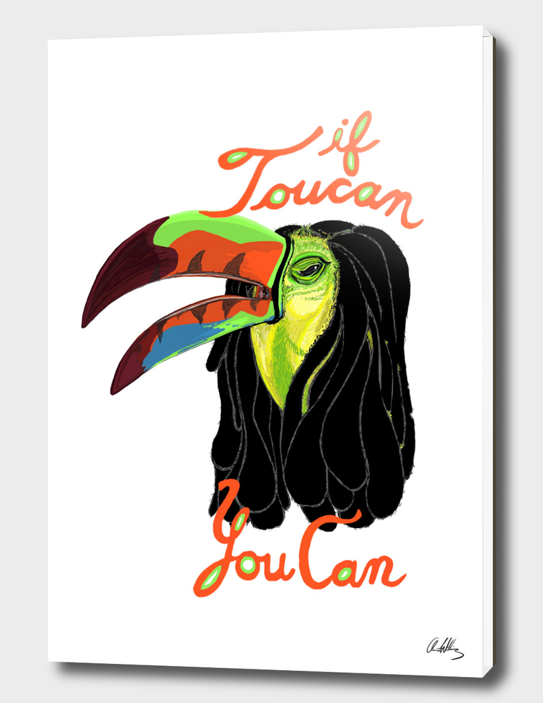 If Toucan, You Can