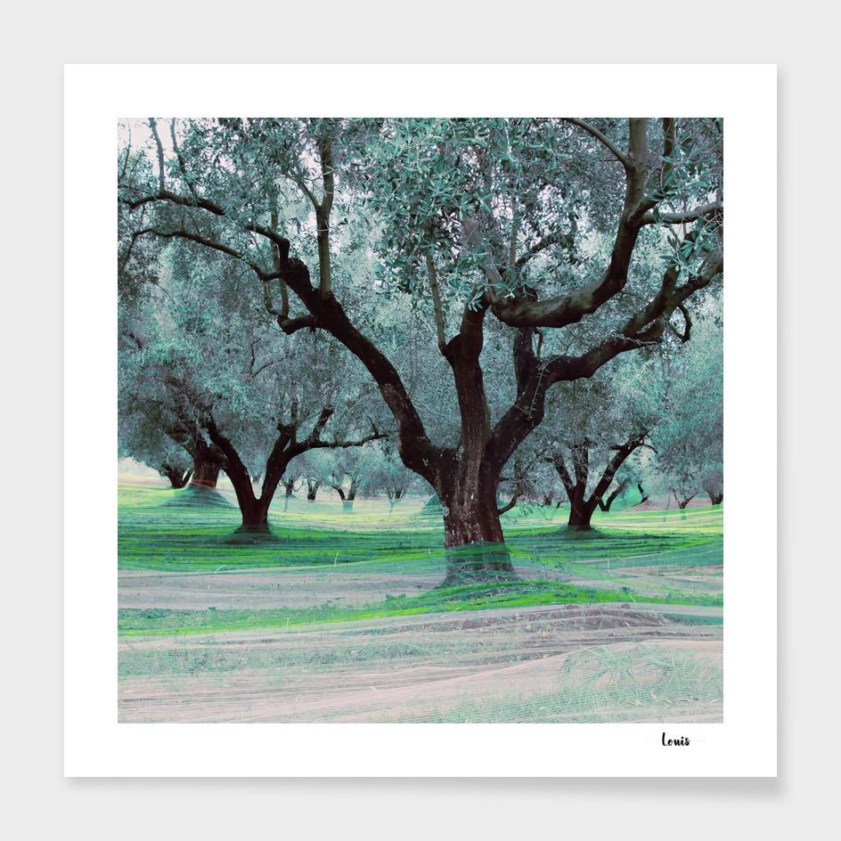 Fishing Olives - verda