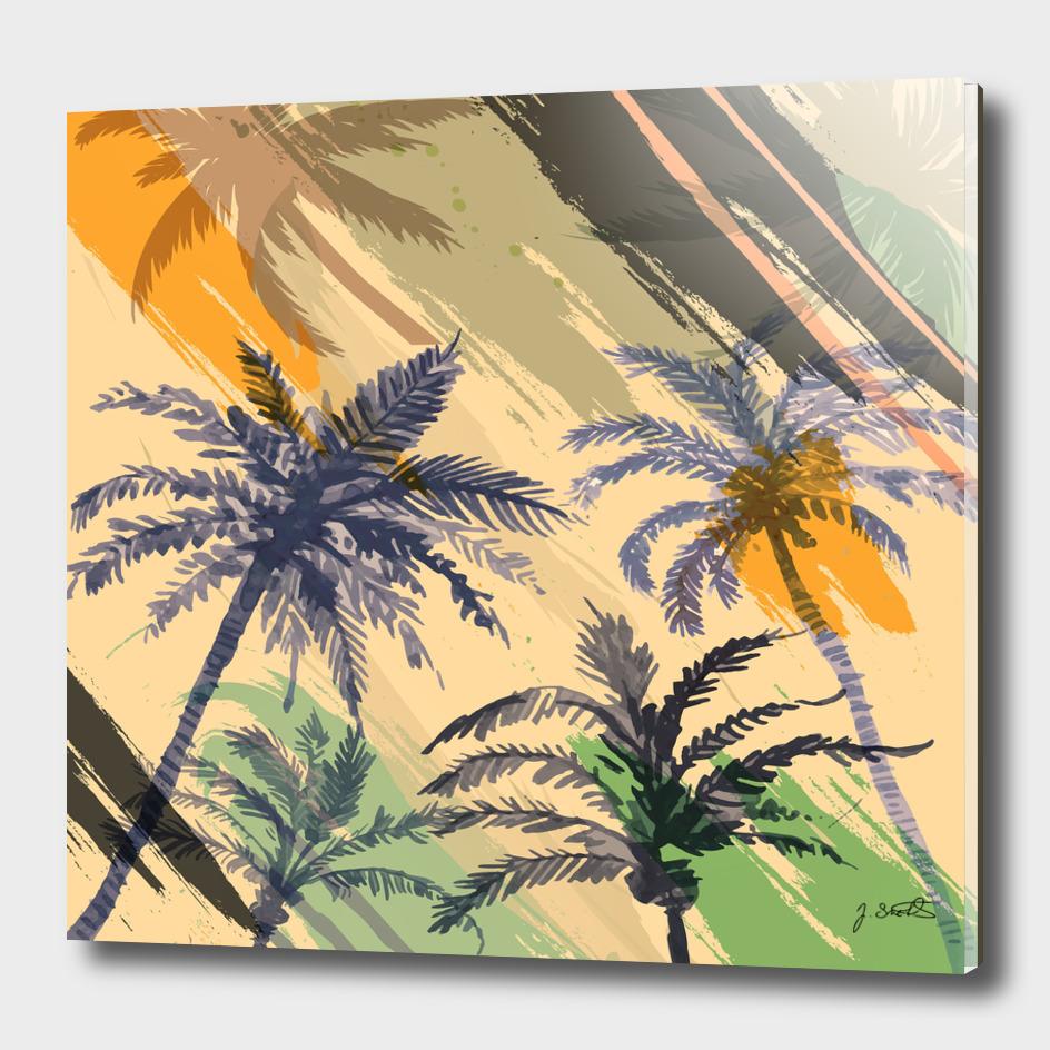 Palm Beach, summer