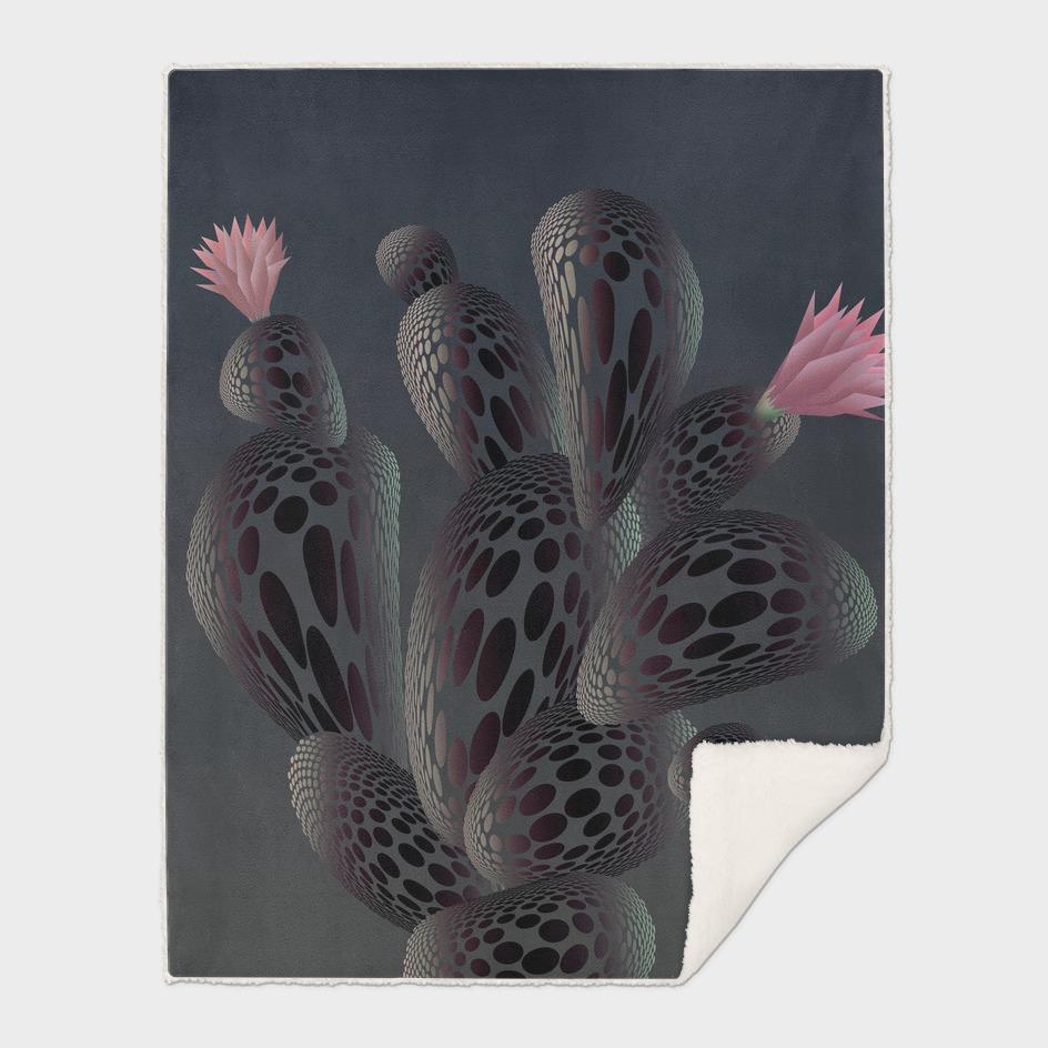 Moonlight Cactus