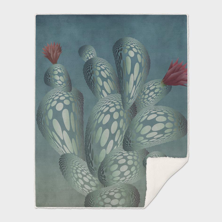Ok Cactus