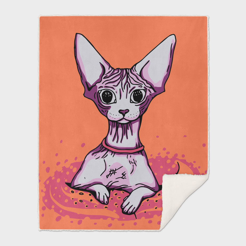 Sphynx Cat - Orange Background