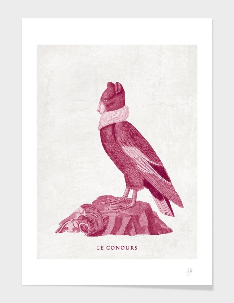 Le Conours