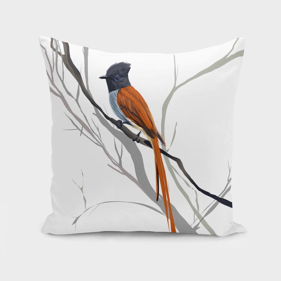 Flycatcher_bird