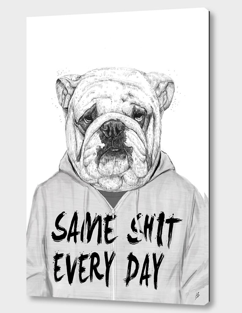 Same shit...