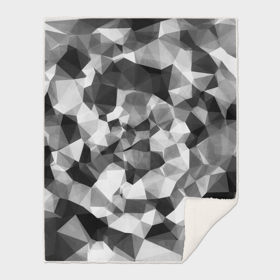 contemporary geometric polygon abstract in black and white