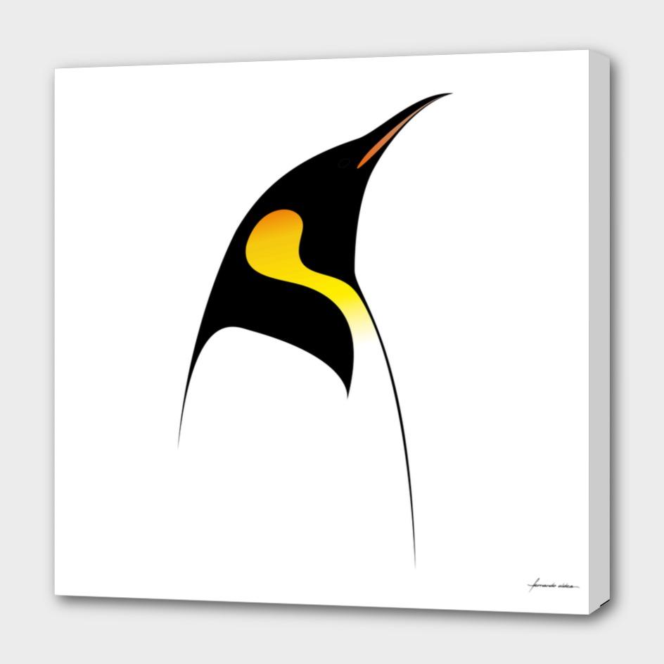Pingüino emperador / Emperor penguin