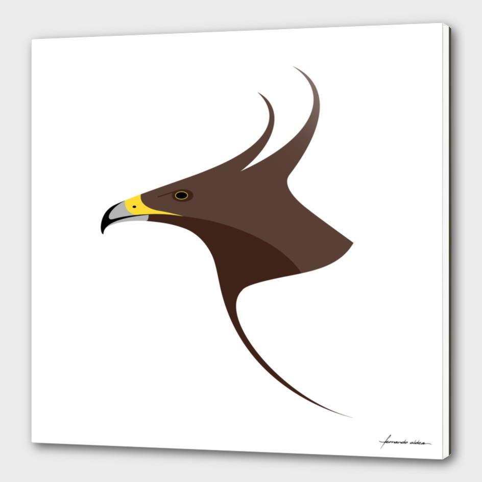 Águila crestilarga / Long-crested eagle