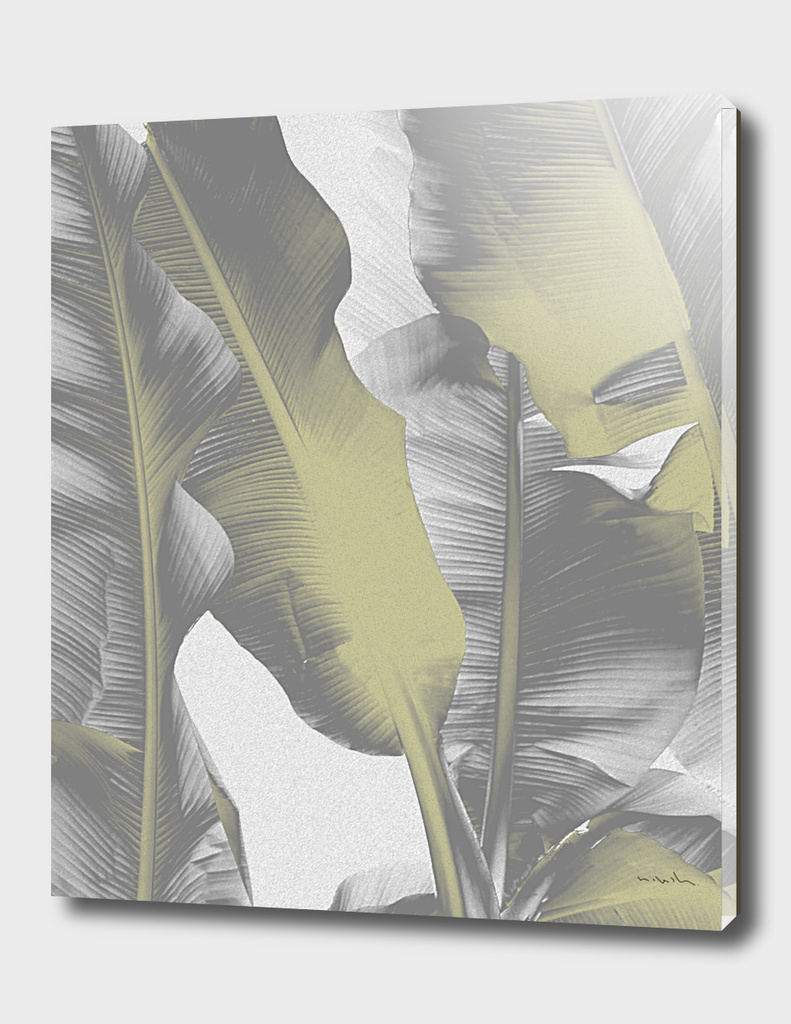 Gray and Gold Banana Leaves