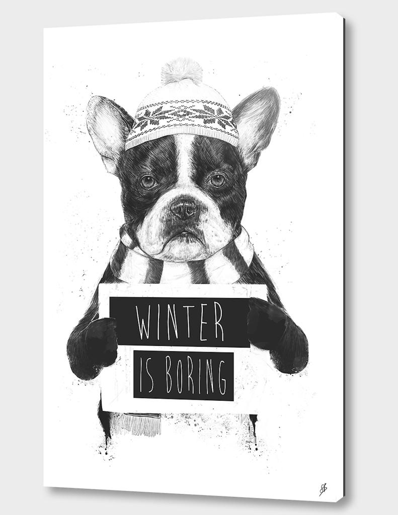 Winter is boring