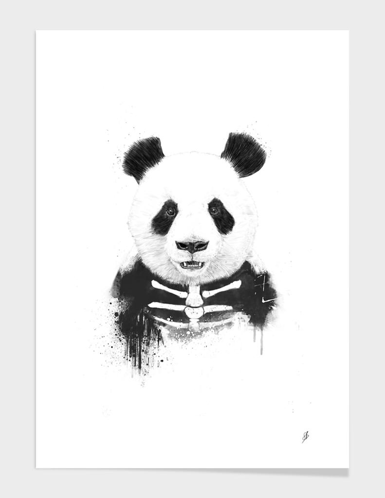 Zombie panda