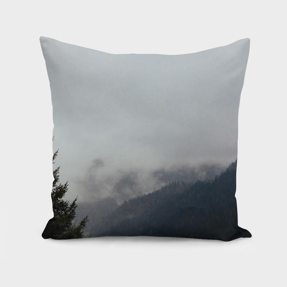 Fog and mountain