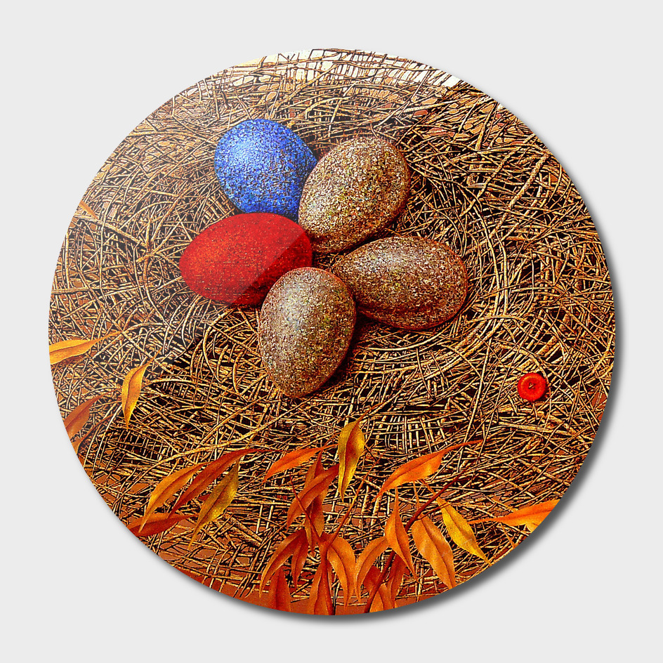 Nest birdie
