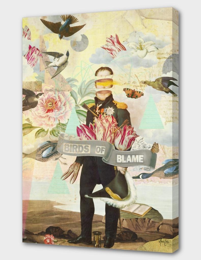 Birds Of Blame