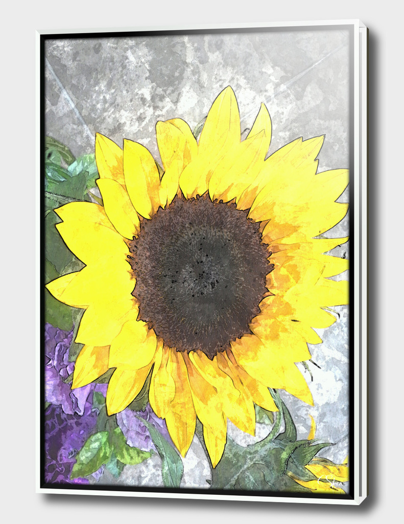 Birthday Sunflower DPGPA160408a