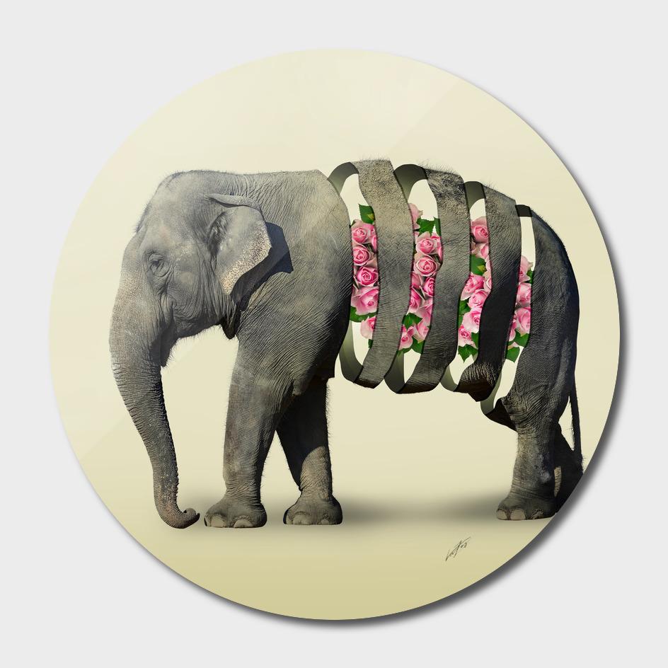 Inner Rose Elephant