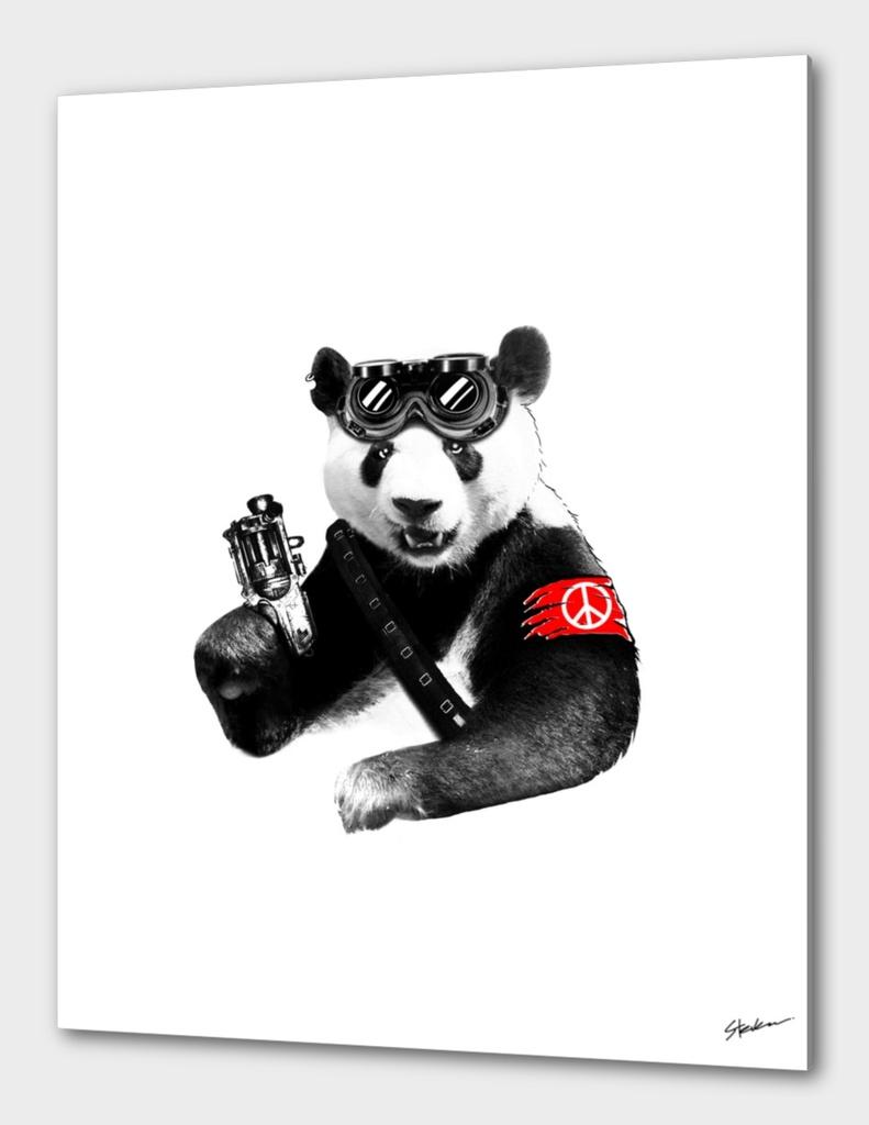Panda Rebel