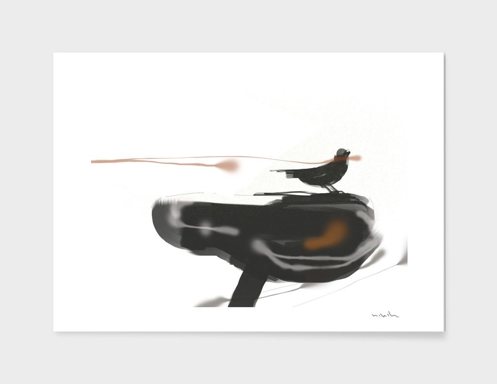 Bird Bicycle Black And White