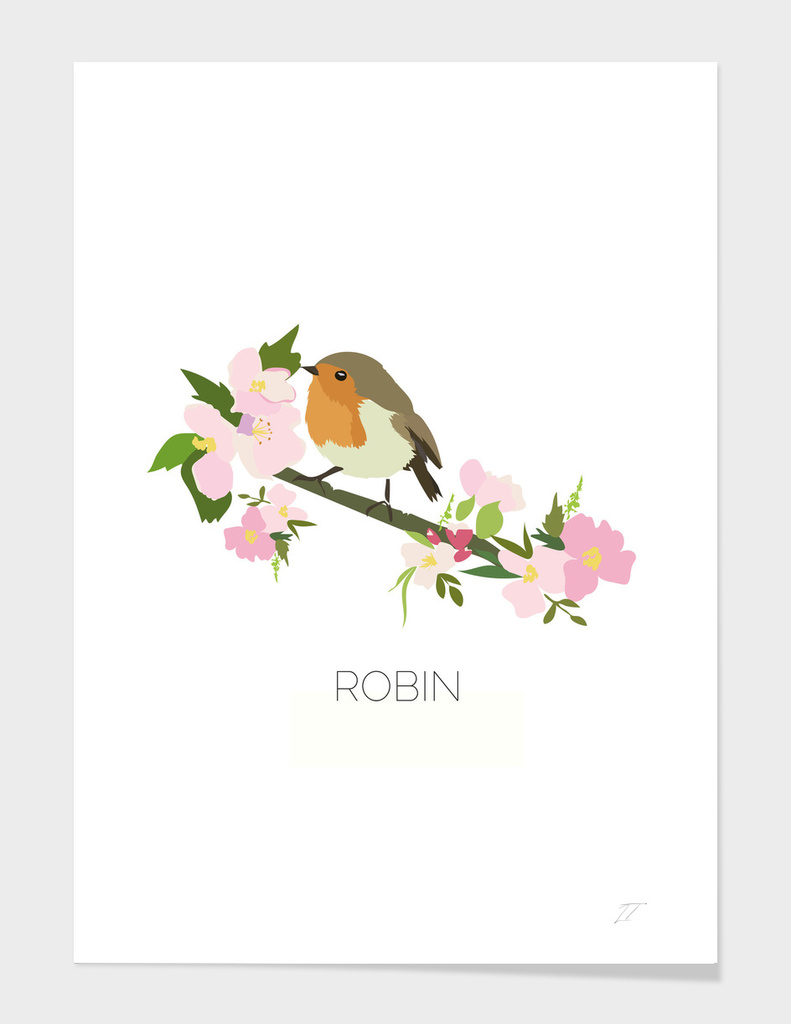 Robin Illustration Art Print