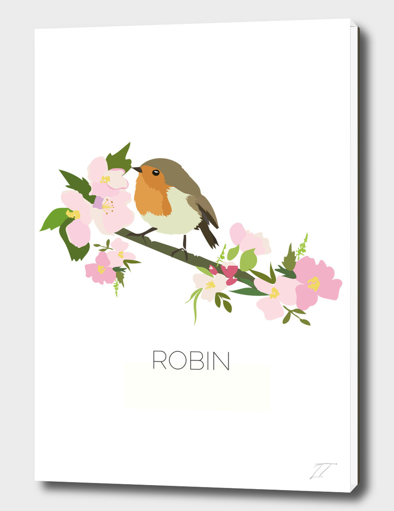 Robin Illustration Art Print