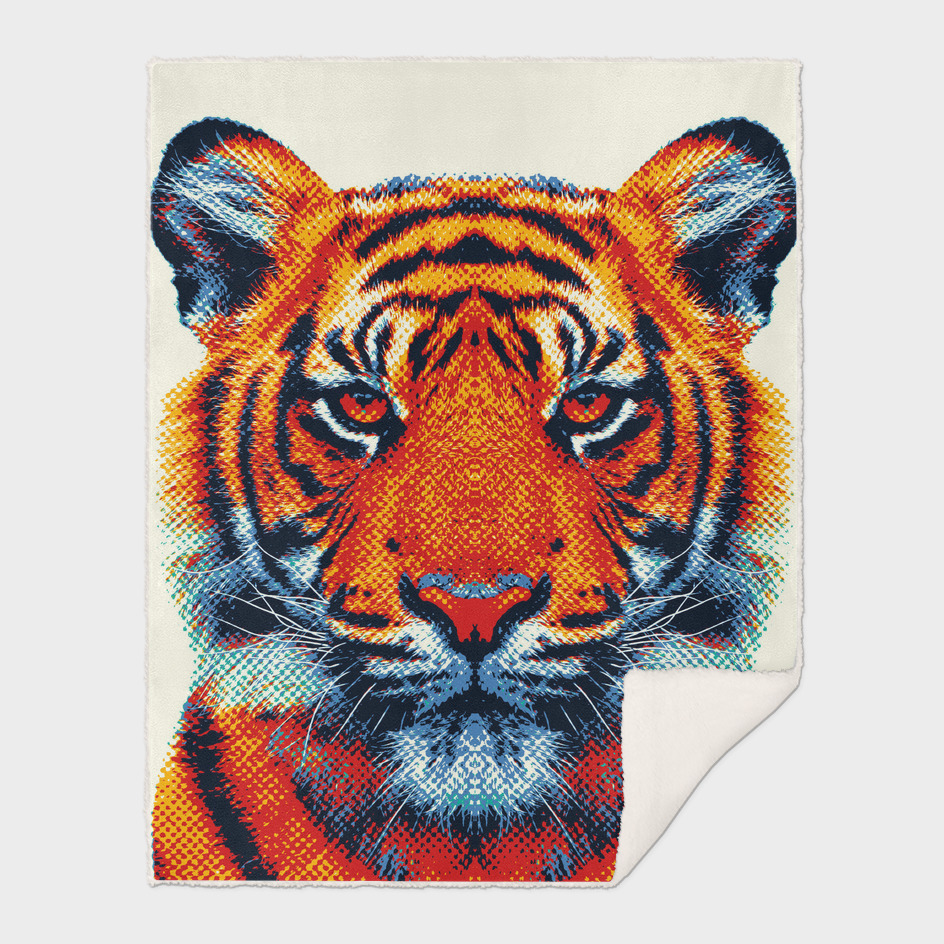 Tiger - Colorful Animals