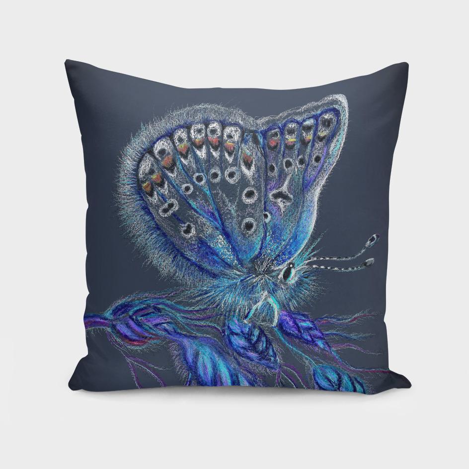 lovelorn butterfly