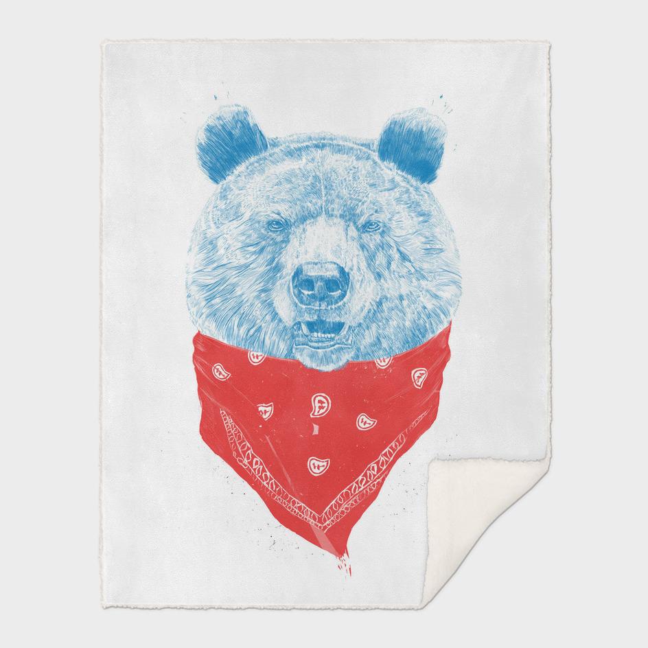 Wild bear (color version)