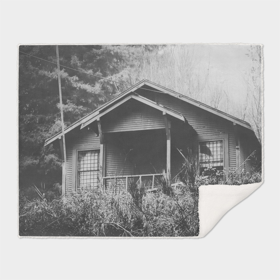 wooden house in the forest with rain in black and white