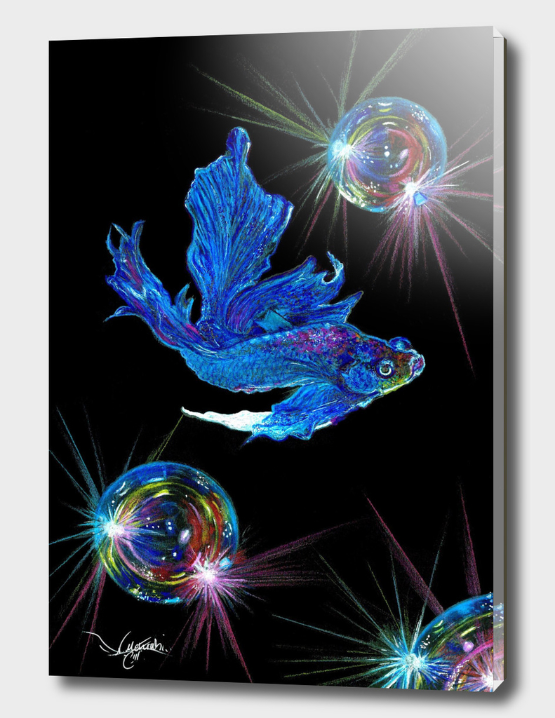 siamese fighting fish and shining bubbles