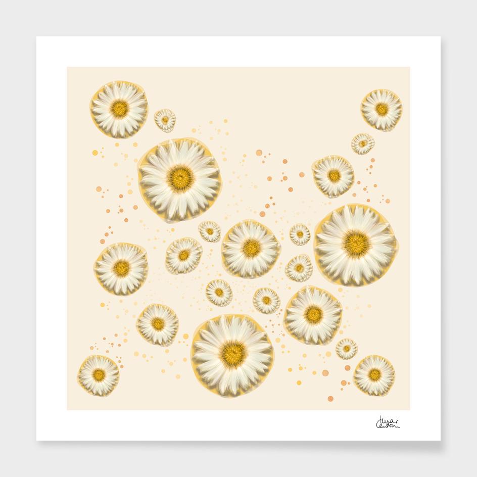 """Marguerite Polka Dots (Pattern)"""