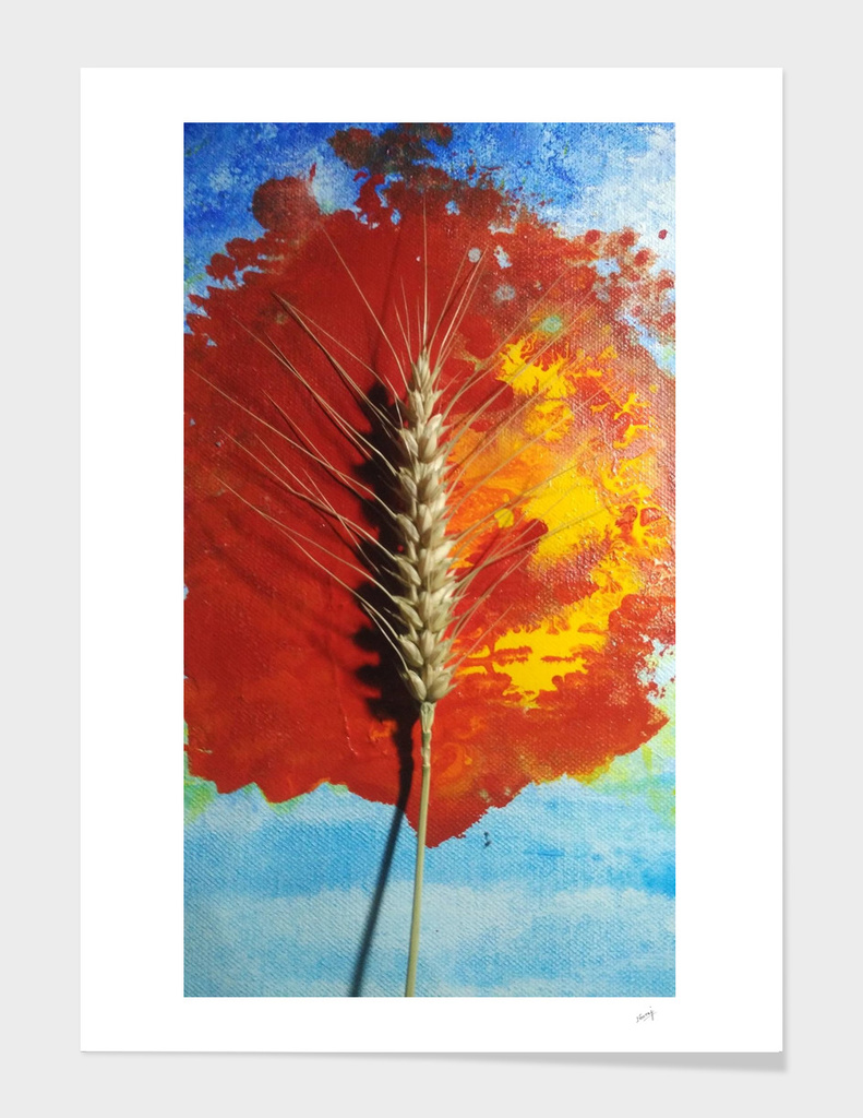 Grains of Life-2