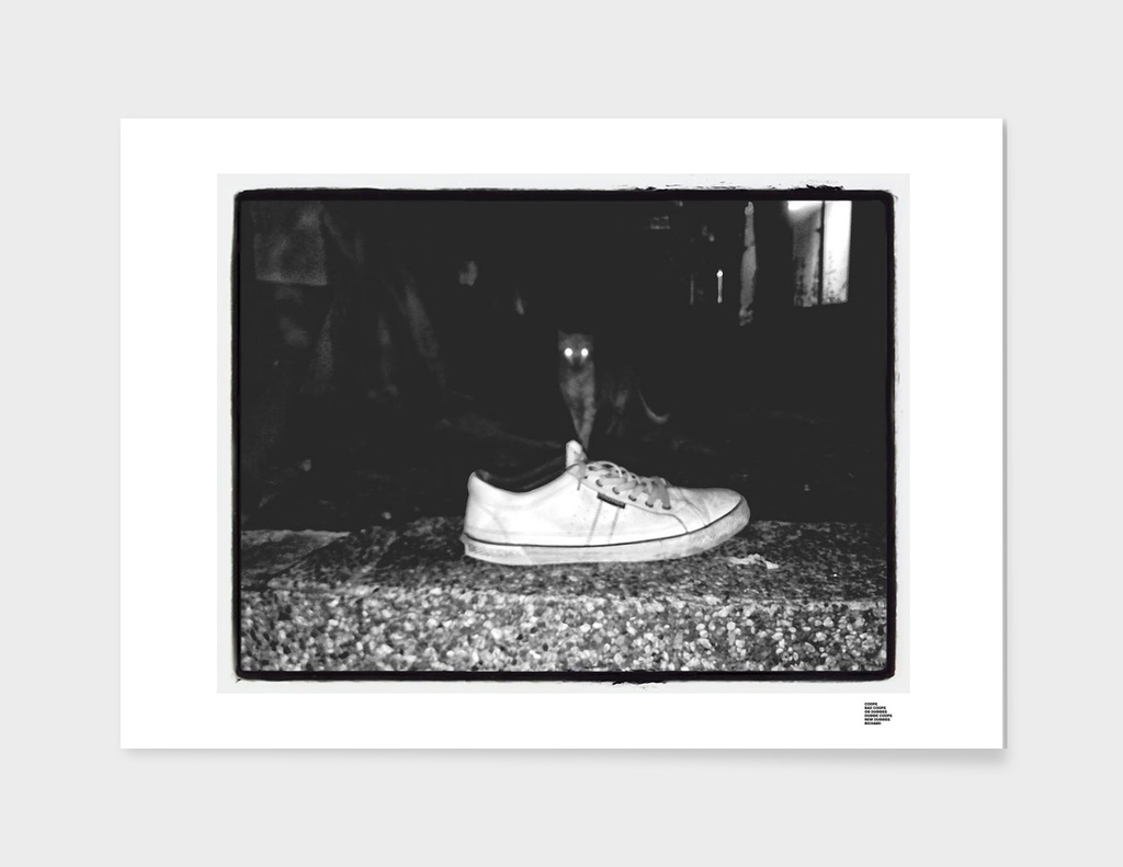 0__0000_street-photography-shoes-streetphoto_bw-cat-b
