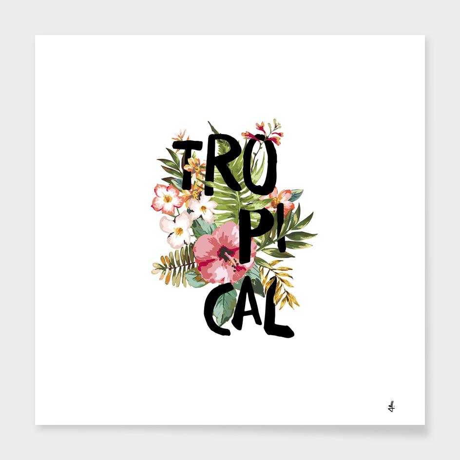 Tropical I