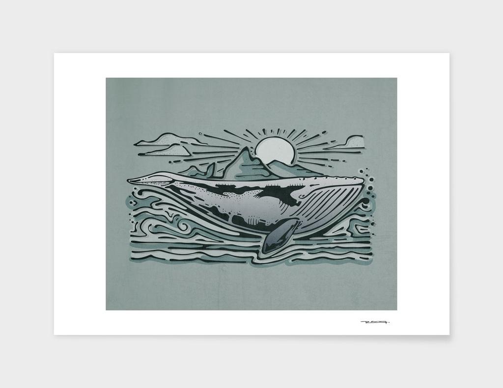 Gray whale digital illustration